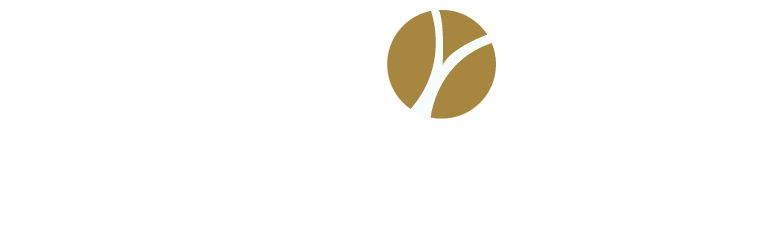 waypoint-strategic-advisors-logo.png